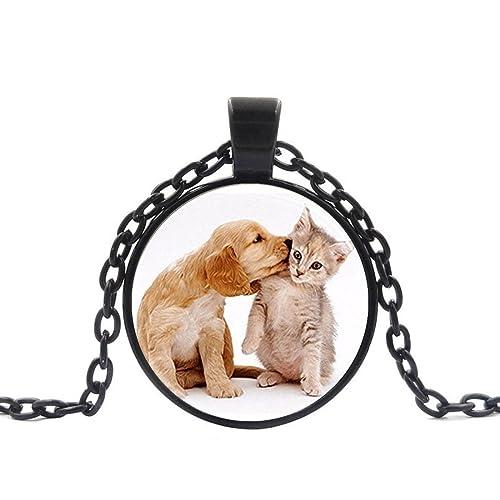 Amazon.com: Collar con colgante de perro y gato con forma ...