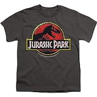 Popfunk Jurassic Park Stone Logo Youth T Shirt & Stickers