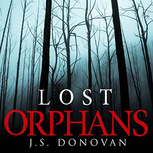 The Lost Orphans: A Riveting Mystery, Book 2
