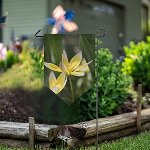 LENNEL Bandera de jardín de Doble Cara 28x40 Pulgadas para Fiesta de jardín Boda Granja Decoración para el hogar Flor: Amazon.es: Jardín