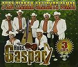 Puro Tierra Caliente Compa by Hermanos Gaspar (2010-01-26)