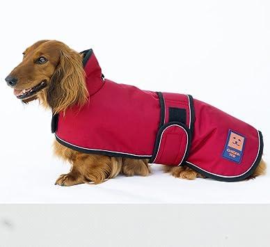 Ginger Ted - Abrigo para perro impermeable, para la lluvia; para ...