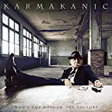 Who S the Boss in the Factory by KARMAKANIC (2013-05-04)