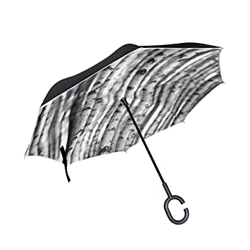jstel doble capa puede Árbol de abedul paraguas coches Reverse resistente al viento lluvia paraguas para