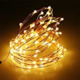 Led Copper String Lights Dimmable Copper Wire Starry Light 100 LEDs 33ft for Bedroom Patio Garden Christmas Outdoor Party Wedding Lamping Warm White (DC Powered)
