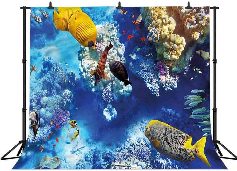 6x6FT Vinyl Backdrop Photographer,Fish,Marine Theme Wild Life Design Photo Backdrop Baby Newborn Photo Studio Props