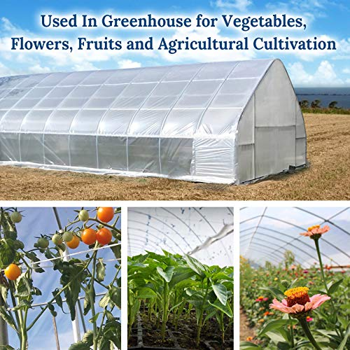 BenefitUSA 12ft X 25ft Clear Plastic Greenhouse Cover 6mil Thicker PE Covering by Benefit-USA (Image #1)