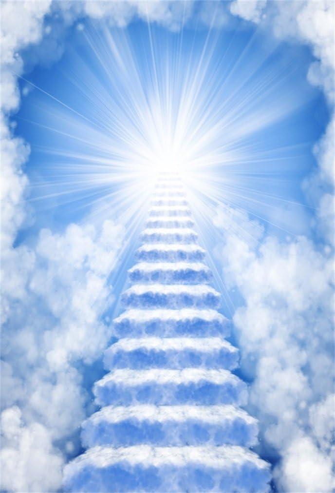 YongFoto 1x1,5m Fondo de Fotografia Soñador Cuento de Hadas Holy Light Blue Nube Blanca Escalera al Cielo Telón de Fondo Fiesta Niños Boby Boda Retrato Personal Estudio Fotográfico Accesorios: Amazon.es: Electrónica