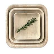 """Disposable Palm Leaf Square Dinner Plates by Rustic Earthware 