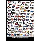 100 Cats and a Mouse Poster Print by Vittorio Fiorucci (25 x 36)