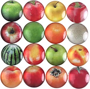 Zicome Fruit Themed Refrigerator Magnets Set of 16