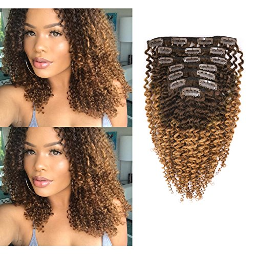 Beauty : Anrosa Kinky Clip ins 3B 3C 4A Kinkys Curly Ombre Hair Extensions Clip in Human Hair Afro Kinky Curly Natural Black with Brown Color Thick Hair 120 Gram 14 Inch for African American