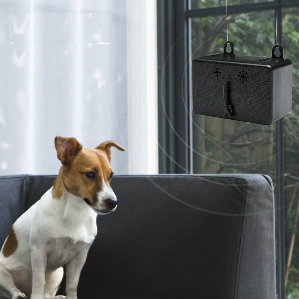 Zelers Sonic Bark Deterrents Dog Barking Control Repeller Circuit You Can Find One On This Ultrasonic Repellent Devices Anti Device Whistle To Stop Deterrent