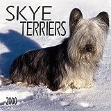 Skye Terriers 2000