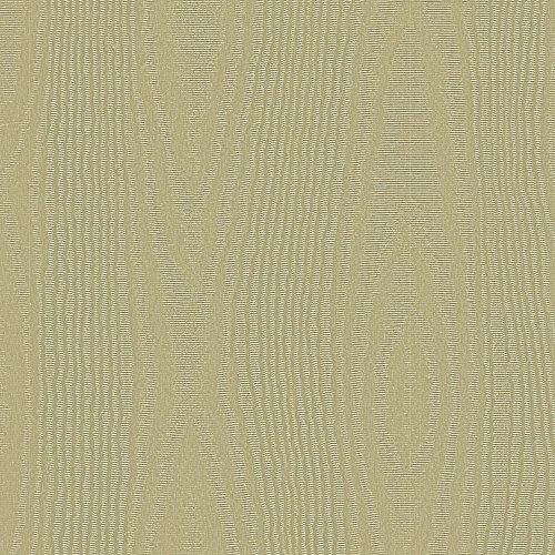 Pale Gold Moire Embossed Foil Jeweler