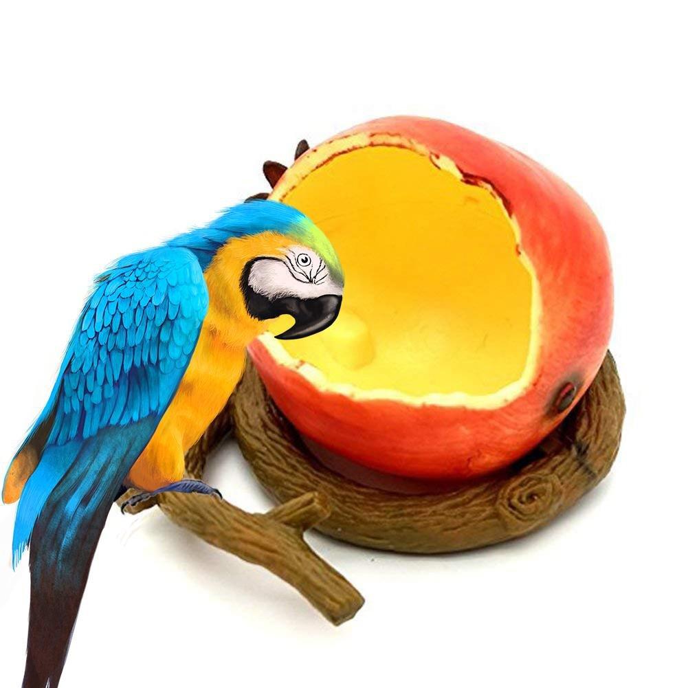 Welltobuy Pet mangiatoia per uccelli a forma di frutta ciotola di pappagallo criceto piccolo animale acqua cibo personalizzabile feeder ciotola Welltobuy-555