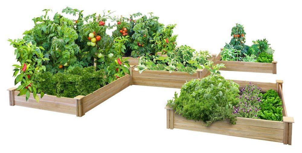 Greenes Fence 80-Sq Ft Dovetail Raised Bed Garden Kit
