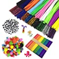 Wartoon Pipe Cleaners Crafts Set