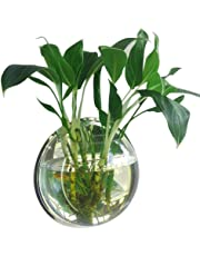 Mirror Face Style Acrylic Round Wall Mounted Hanging Fish Bowl Aquarium Tank for Gold Fish and Beta Fish Plant Vase Home Decoration Pot,23cm Diameter