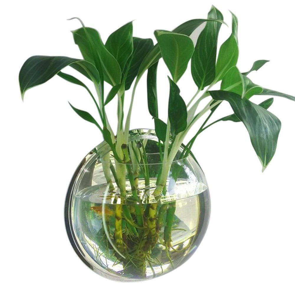 Mirror Face Style Acrylic Round Wall Mounted Hanging Fish Bowl Aquarium Tank for Gold Fish and Beta Fish Plant Vase Home Decoration Pot,29.5cm Diameter