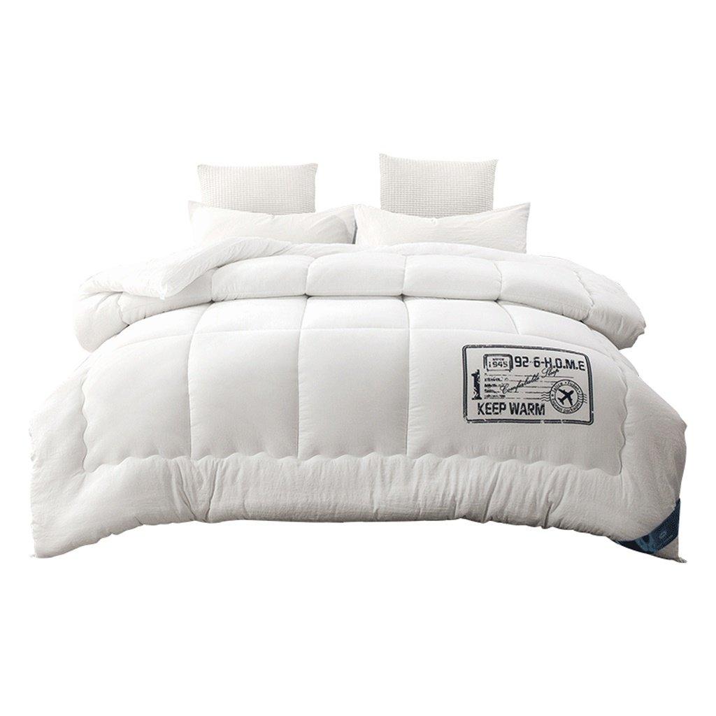 MMM L'épaississement de courtepointes d'hiver gardent le noyau simple de double de polyester brossé chaud de tissu
