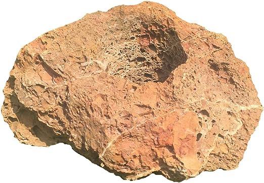 Dehner Lavastein Piedra volcánica, Natural: Amazon.es: Jardín
