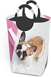 EJudge Laundry Basket Pet French Bulldog Puppy Large Collapsible Dirty Laundry Hamper Bag Tall Fabric Storage Baskets Rectangle Fold Washing Bin Hand Clothes Organizer for Kids,Dorm 50L