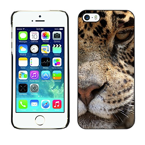 Premio Sottile Slim Cassa Custodia Case Cover Shell // V00002126 Jaguar // Apple iPhone 5 5S 5G