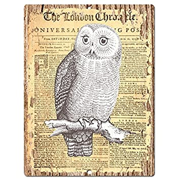 Amazon.com: OWl Old Paper Chic Sign Rustic Shabby Vintage style ...