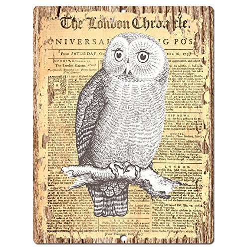 OWl Old Paper Chic Sign Rustic Shabby Vintage  Retro Kitchen