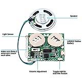 Icstation DIY Light Sensor Sound Module Micro USB