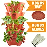 Five Tier Stackable Planter by Sue's Garden - Terra Cotta Appearance - Grow Strawberry or Other Plants in Very Small Space - Includes BONUS Leather Gloves