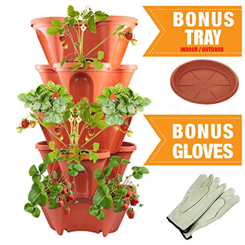 Stackable Strawberry Vegetable Garden Vertical product image