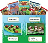 Concepts 6-Book Set (Language Arts)