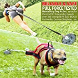 Pestairs 360° Swivel Dog Tie Out Stake Dog