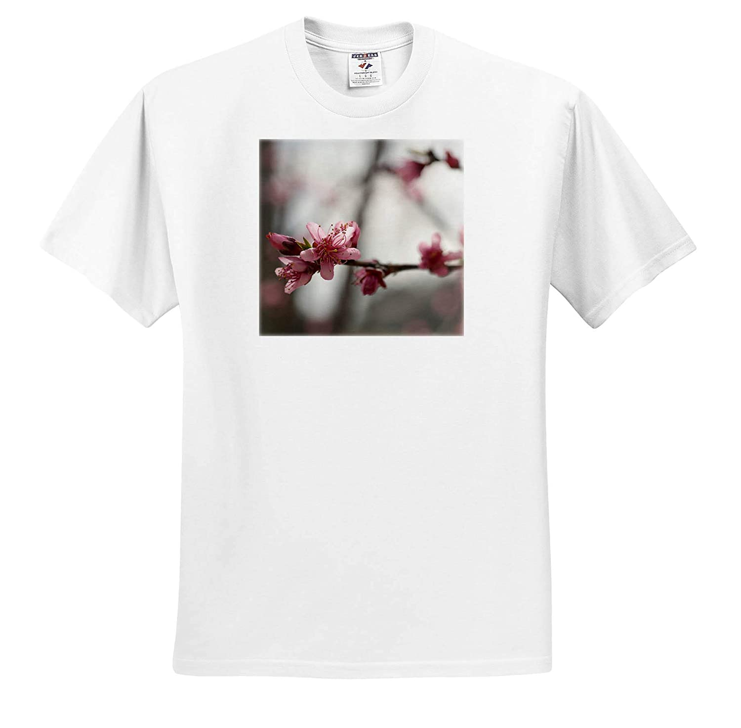 3dRose Stamp City - T-Shirts Photograph of Peach Tree Blossoms in Bloom Flowers