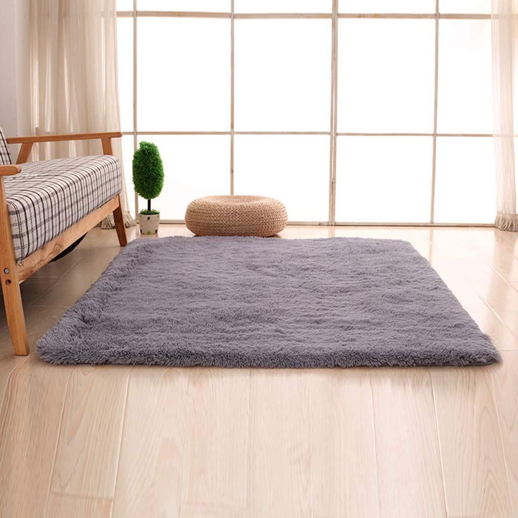 PLY HOME Bathroom Kitchen Living Bedroom Carpet Tiles,Simple Modern Silk Hair Living Room Bedroom Bedside Mat Non-Slip Carpet Rectangular Coffee Table Carpet (Color : E, Size : 1602303cm)