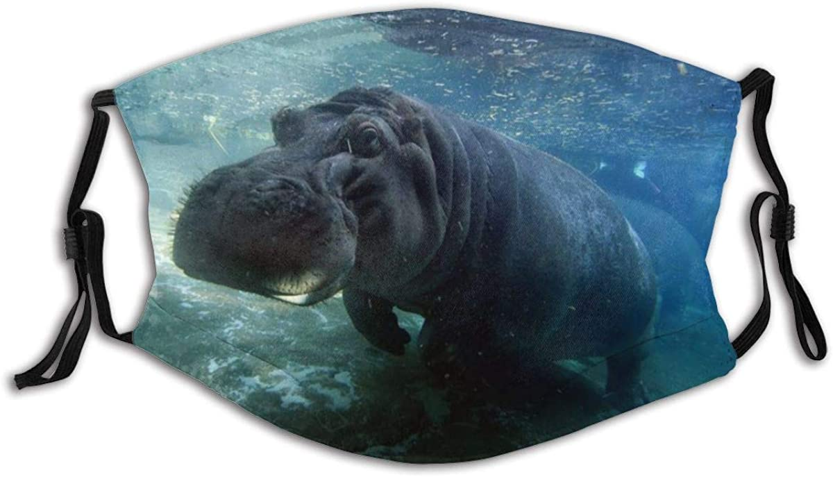 Guanghan Hippo Under Water Unisex Reusable Face Cover Windproof Dustproof Mask Scarf