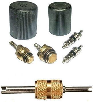 MagiDeal 101 Pieces A//C Shrader Valve Core /& Remover Tool R12 AC Valves HVAC kit