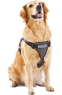 Alimao® Arnés para Perros de Trabajo Pesado, Prevención de tirones, paño de Oxford