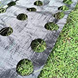 OriginA 3x25ft Weed Control Fabric Planting Holes - Ground Cover Weed Barrier - Eco-Friendly for Vegetable Garden Landscape(Dia 3'',3 Row)