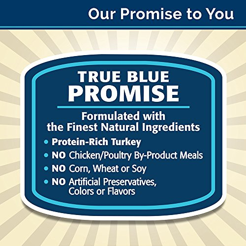859610005765 - BLUE Basics Limited Ingredient Diet Puppy Turkey & Potato Dry Dog Food 24-lb carousel main 5