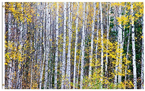 ShineSnow Autumn Birch Tree Forest Golden Leaves Fall Woodland October Seasonal 4x6 Feet Flag, Polyester Double Stitched with Brass Grommets 4 X 6 Ft Flag for Outdoor Indoor Home Decor