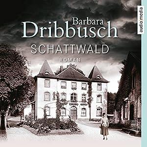 Schattwald Hörbuch