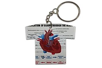 Llavero Médico Sala Espera Corazón Jersey impreso: Amazon.es ...