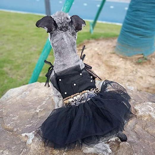 Yinoot Vestidos para Mascotas, Camiseta para Gatos Ropa Perros Falda Transpirable de Gatos con Perla Primavera y Verano(Negro,M): Amazon.es: Productos para mascotas