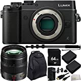 Panasonic Lumix DMC-GX8 Mirrorless Micro Four Thirds Digital Camera (Body Only, Black) with Panasonic Lumix G X Vario 12-35mm f/2.8 Asph. 64GB Bundle 10PC Accessory Kit. Includes 64GB Memory Card + 2 Replacement BLC-12 Batteries + MORE