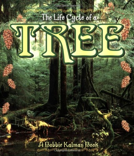 Tree (Life Cycle of A...(Paperback))