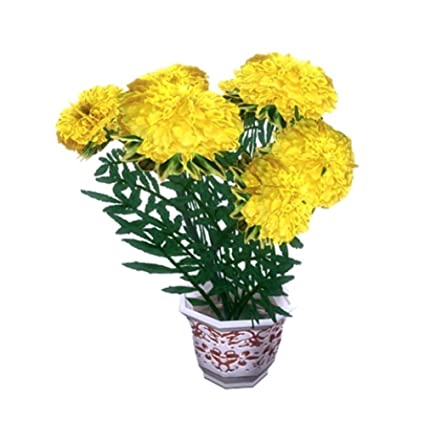 Amazon higarden potted flower seeds tagetes erecta aztec higarden potted flower seeds tagetes erecta aztec marigold yellow cell seeds chrysanthemum about mightylinksfo