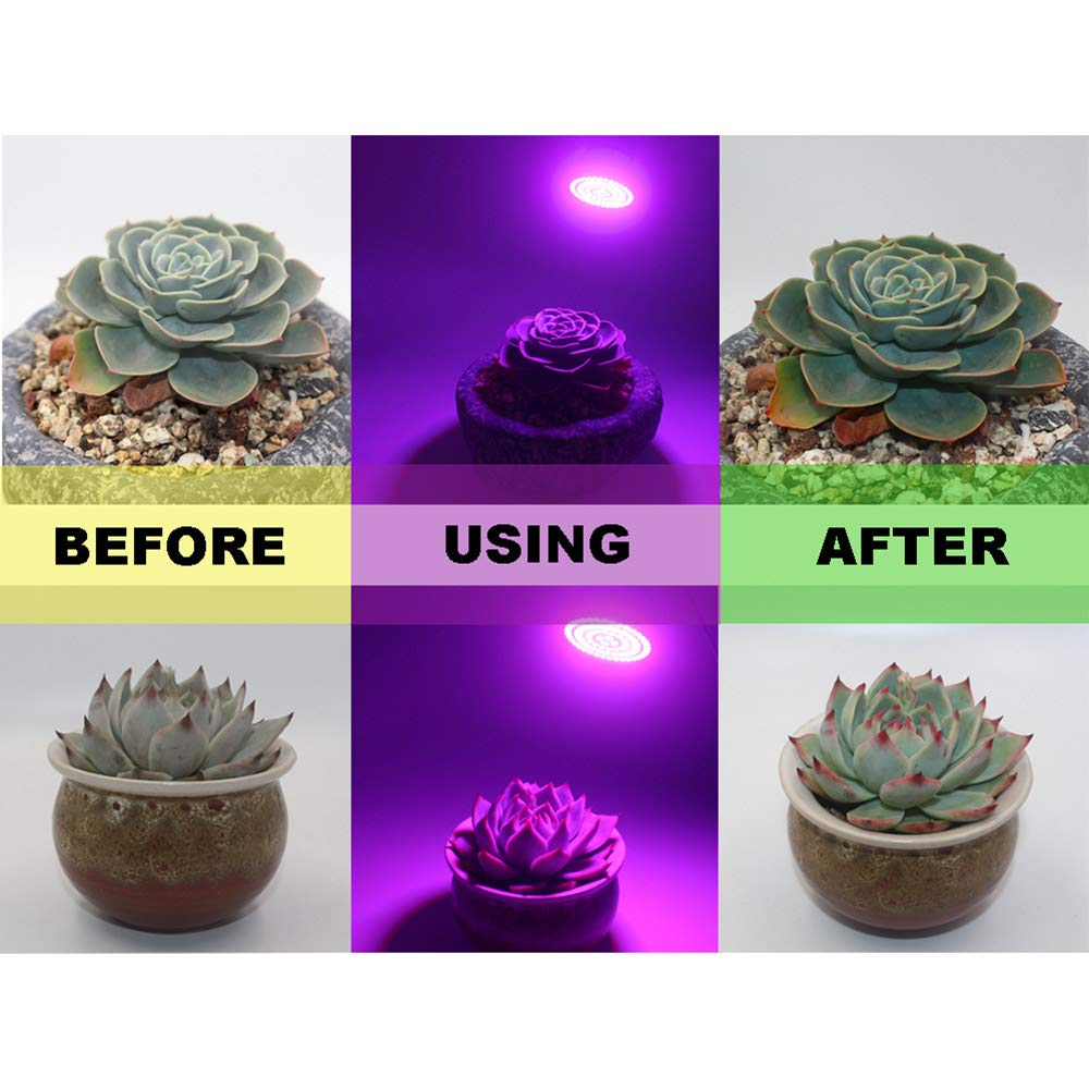 80 Leds Bombilla de Iluminaci/ón de Plantas Hidrop/ónicas Luz de Crecemiento de Flores Frutas Verduras Walmeck Grow Light 48//60